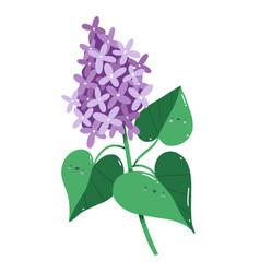 Lilac flowers branch cartoon vector