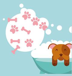 Love dog pet vector