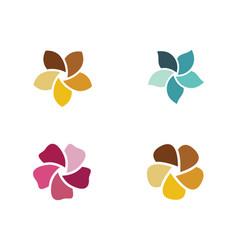 plumeria flower icon vector image