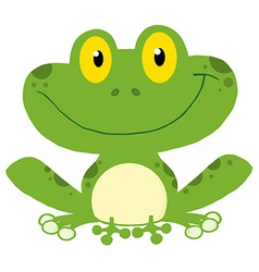 Smiling Green Frog vector image