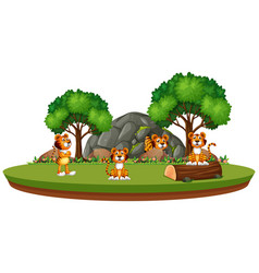 tiger in isolated nature vector image
