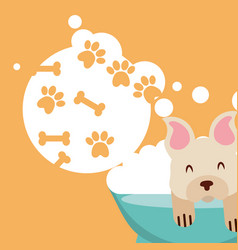 Love dog pet vector
