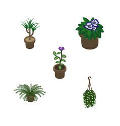 isometric houseplant set of blossom flower plant vector image