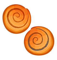 Top view on crispy buns with poppy and jam vector