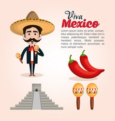 viva mexico poster icon vector image