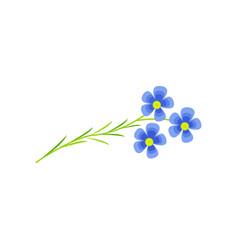 flax flower cartoon vector image