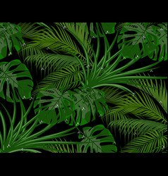 jungle green leaves of tropical palm trees vector image