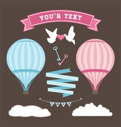 Wedding Balloon set vector image vector image