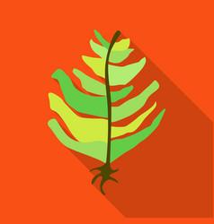 Design seaweed and green logo vector