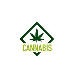 marijuana cannabis logo vector image