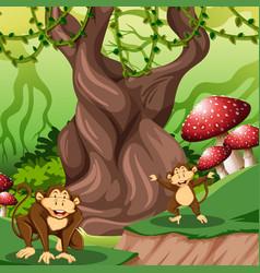 monkey in jungle scene vector image
