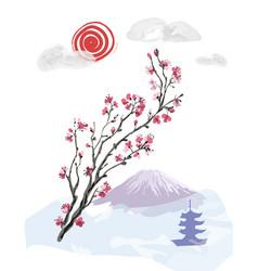 realistic sakura blossom vector image