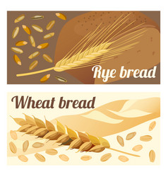 Rye and wheat bread vector