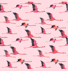 Watercolor flamingo pattern vector