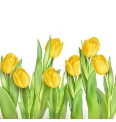 Bunch of tulips EPS 10 vector image