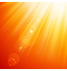 sun rays vector image vector image