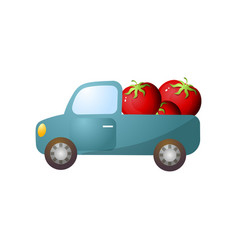blue retro pickup with red fresh farm tomato vector image