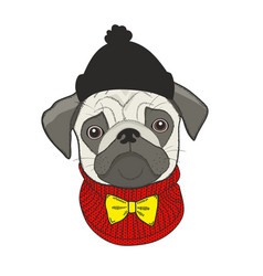 Cute of face of dog in hat vector