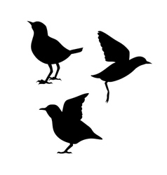 Dipper silhouettes vector image