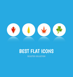 flat icon leaves set of leaf frond maple and vector image