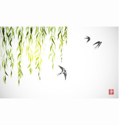 Flying swallow birds and green willow branches on vector