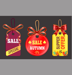 Special autumn sale super offer promotion label vector