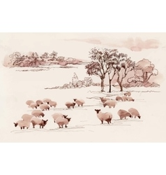 Watercolor summer landscape with sheep vector image