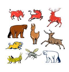 Wildlife animals cartoon set vector