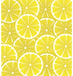 Lemon Slices Background2 vector image vector image