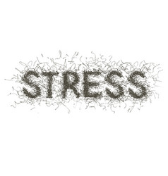 inscription a stress in the form of curve vector image vector image