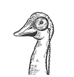 Goose wih monocle engraving vector