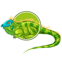 iguanas character on sticker template vector image