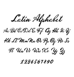 Latin alphabet classical calligraphy and lettering vector
