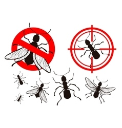 Termite or ant pest control icons set vector