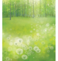 green forest field vector image vector image