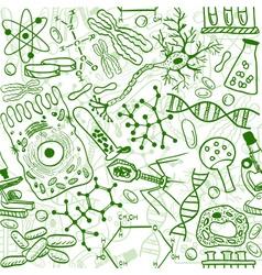 Biology drawings vector image vector image