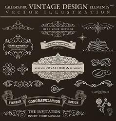 Calligraphic design elements vintage set ornament vector image