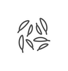 caraway line icon vector image