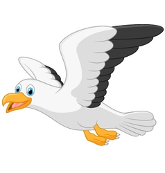 Cartoon smiling seagull on white background vector image