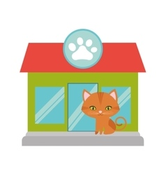 Orange cat green eyes pet shop facade paw print vector