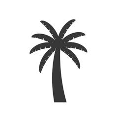 Palm tree plant nature season icon graphic vector