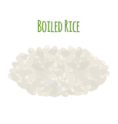 rice vegetarian food boiled rice seeds vector image