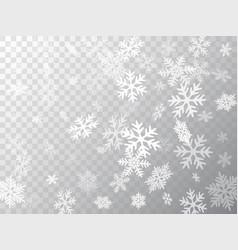 snow flakes falling macro vector image
