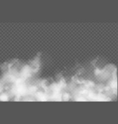 transparent effect with fog or smoke white cloud vector image