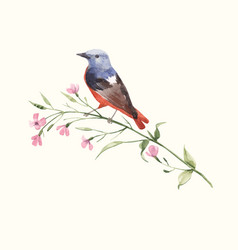 watercolor bird on flower vector image
