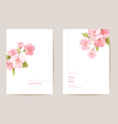 wedding invitation cherry sakura blossom flowers vector image