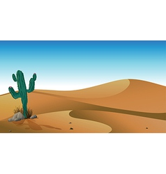 A cactus in the desert vector image