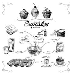 Simple cupcake recipe Step by step Hand drawn vector image vector image