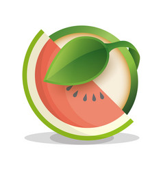 watermelon vegan food fresh vector image vector image