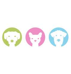 color dogs vector image
